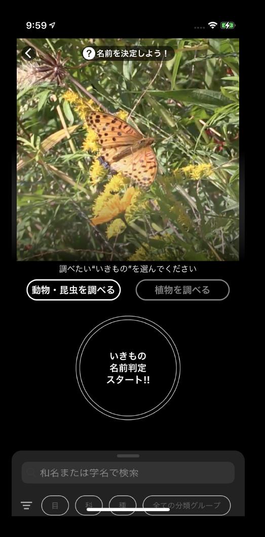 アプリ画面・投稿