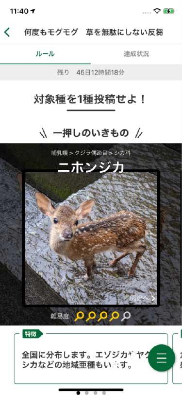 アプリ画面・クエスト詳細